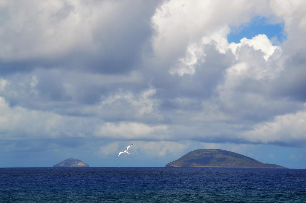 Île Ronde